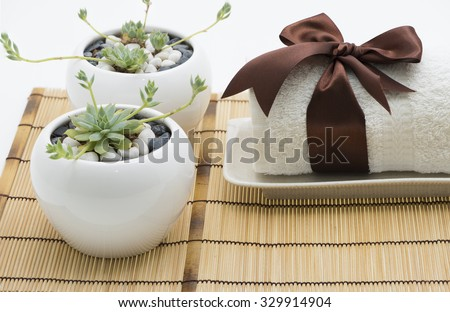 Outdoor spa setting with a white towel tight with brown silk ribbon in bow on long rectangle plate. Two pots of growing succulent plant has small stone. All placed on bamboo mat with white background. - stock photo