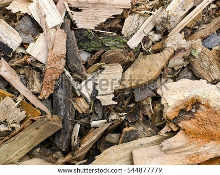 outdoor woods backgrounds. Outdoor Wooden Backgrounds Texture And Different Details Woods E