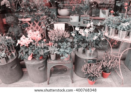 Outside of French flowers shop. Toned photo. - stock photo
