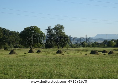 Outskirts of the village. Old traditional hay stacks, typical rural scene. Transcarpathia