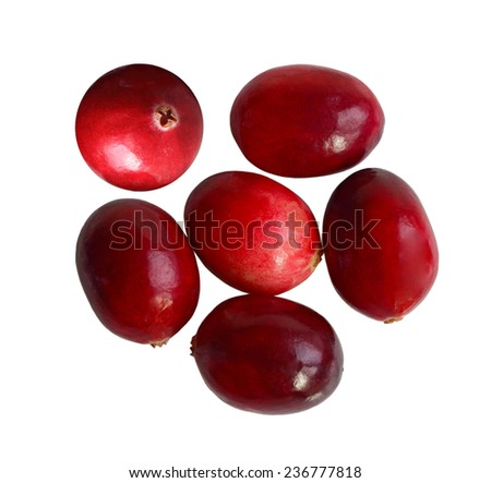 Oval cranberry fruits isolated on white background - stock photo