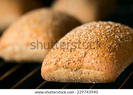 Oven baked bread. Selective focus. Shallow DOF - stock photo