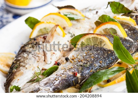 Oven-baked Sea bass with lemon and herbs - stock photo