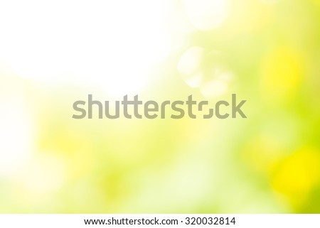 Over blur forest and sky and flower with De focused Bokeh background art for paper texture, art design, backdrop design - stock photo