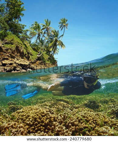 Over-under in the Caribbean sea with a snorkeler underwater in a shallow coral reef and above surface, island shore with coconut trees - stock photo