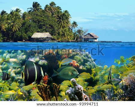Over under view of an island with lush vegetation and thatched hut, underwater, a colorful coral reef with tropical fish, Caribbean sea - stock photo