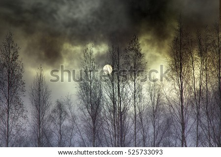 Overcast day, atmosphere of anxiety and fear. Landscape dark atmosphere, sun as moon through dark clouds behind bare branches of trees