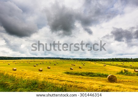Overcast over the field with stacks of freshly harvested grain - stock photo
