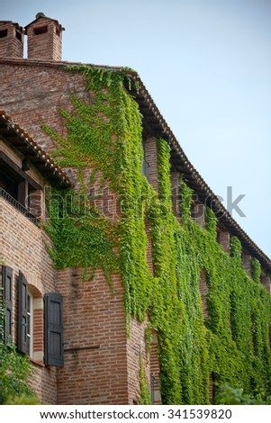 Overgrown brick residential building view. Albi, France