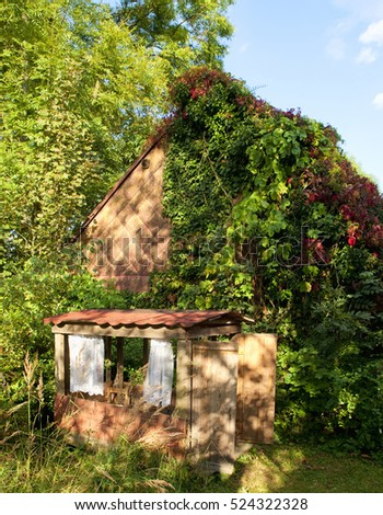 Overgrown Country House along Childrens Cabin