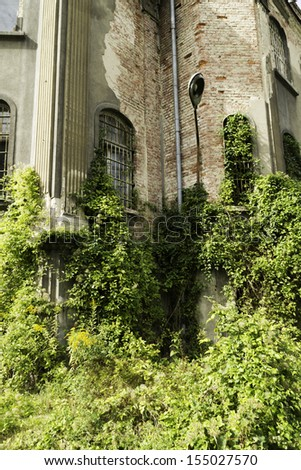 Overgrown plants abandoned, damaged building - stock photo