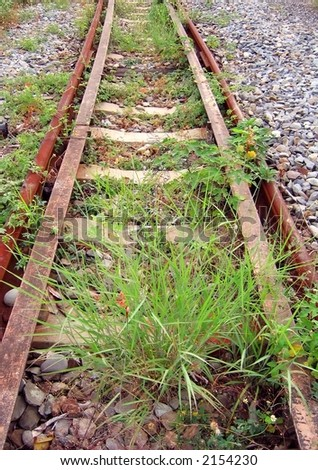 Overgrown Railtracks -- part of a deserted train line - stock photo