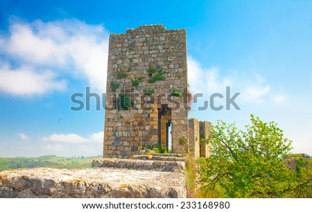 Overgrown remnant of an old guard tower on a medieval city wall  - stock photo
