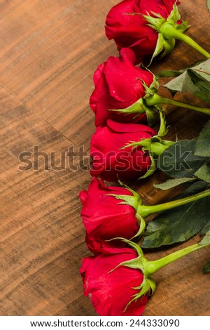 Overhead view of a row of red roses - stock photo