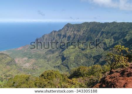 Overlook of lush Kalalau Valley, Kokee State Park, Kauai, Hawaii, USA - stock photo