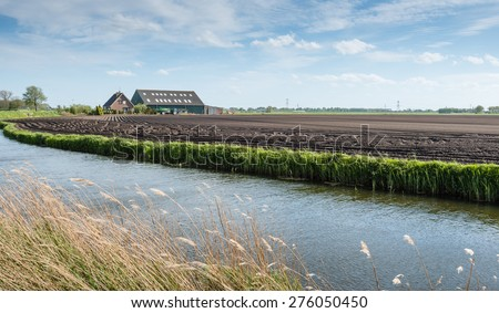 Overlooking a field with recently in the clay soil sown potatoes in long lines and a modern farm with barn. It is a stormy day in the spring season and the yellowed reeds is bent sideways. - stock photo