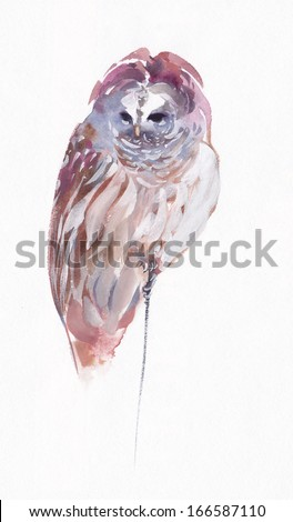 Owl and snow, watercolor - stock photo