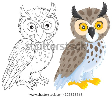 owl, color and black-and-white outline illustrations on a white background - stock photo