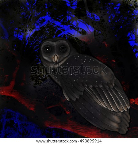 owl on branch  digital illustration, night scene, hand drawn owl on photographic background, illuminated branches,