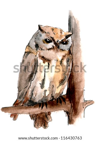 Owl on the branch. Watercolor