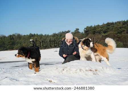 owner with big dogs in snow landscape - stock photo