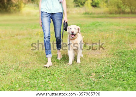 Owner with Golden Retriever dog walking together in park - stock photo
