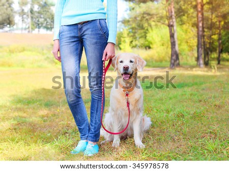 owner woman with Golden Retriever dog walking together in park