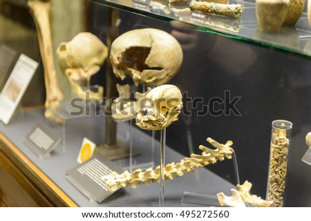 OXFORD, ENGLAND - JUL 10, 2016: Interior of the Museum of the History of Science, Broad Street, Oxford, England. It holds a collection of scientific instruments from Middle Ages to the 19th century.