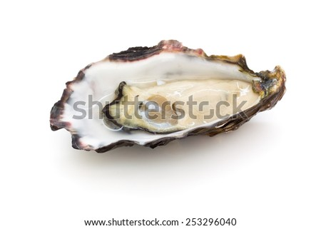 Oyster - stock photo