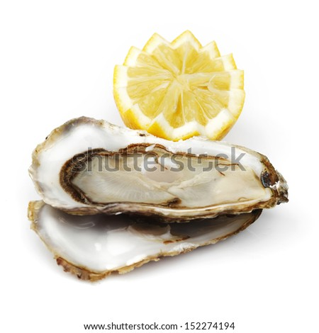 Oyster and lemon on white - stock photo