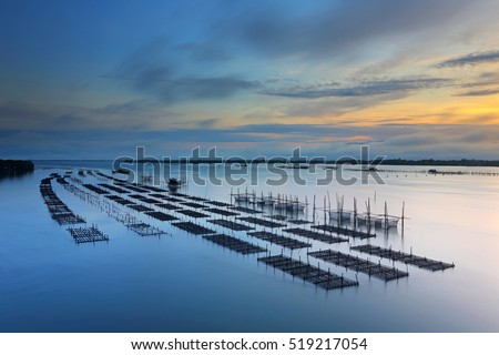 Oyster farm in the sea at sunrise, Chanthaburi, Thailand