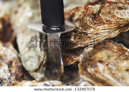 Oysters and knife macro close-up - stock photo