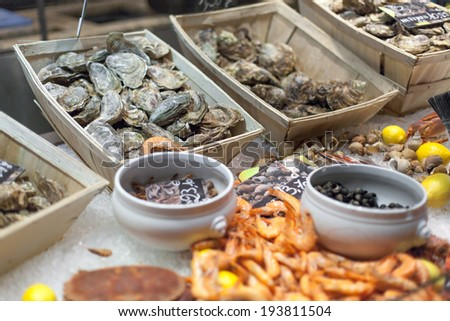 Oysters and shrimps for sale in fish market - stock photo