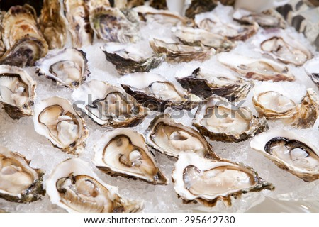 Oysters on ice, Seafood buffet line in hotel restaurant - stock photo