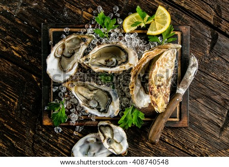 Oysters served on wooden board with ice drift - stock photo