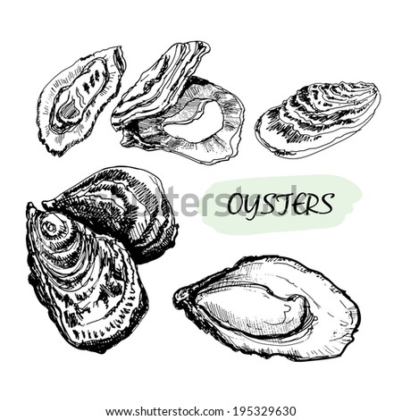 Oysters. Set of graphic hand drawn illustrations - stock photo