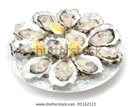 Oysters the Dozen - stock photo