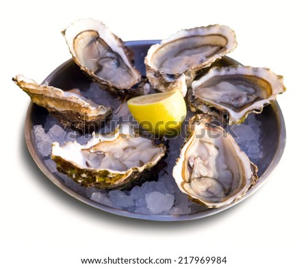Oysters with lemon on plate. Isolated over white - stock photo