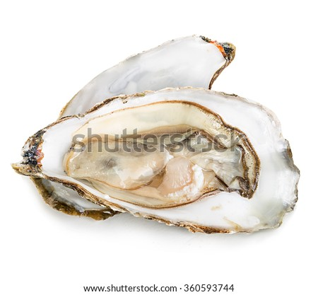 Oysters with pearls isolated on white background. - stock photo