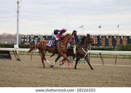 OZONE PARK - APR 4: Weefc with Michael Luzzi Aboard Leaves the Paddock for the Second Race at Aqueduct Race Track- April 4, 2008 in Ozone Park, NY.