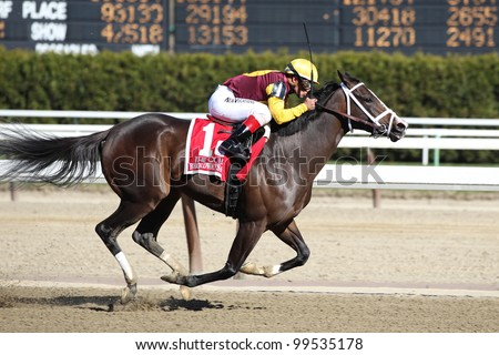 OZONE PARK, NY - APRIL 7: Broadway's Alibi with Javier Castellano wins the 2012 Comley Grade III Stakes at Aqueduct on April 7, 2012 in Ozone Park, New York. - stock photo
