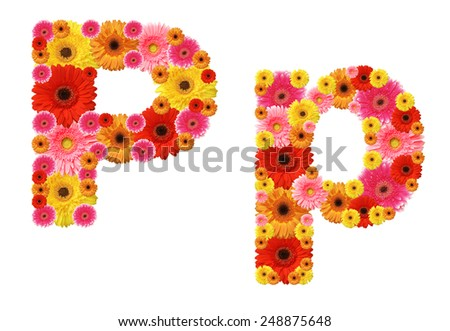 p, flower alphabet - stock photo