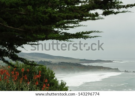 Pacific Coast at Ragged Point, California - stock photo