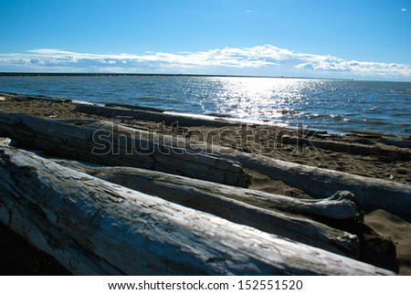 Pacific Northwest ocean beach south of Vancouver with driftwood around noon - stock photo