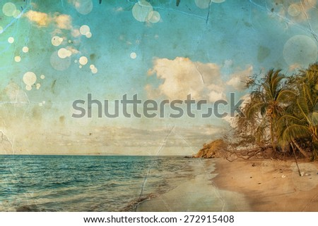 Pacific ocean background, sea and coconut palm, Maui Hawaii - stock photo
