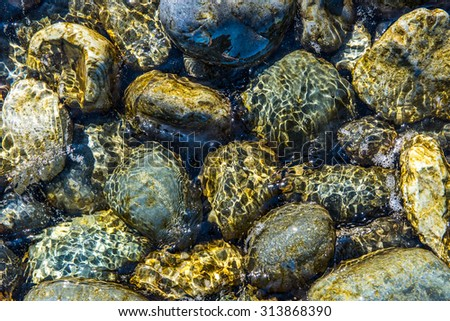 pacific ocean bottom rocks