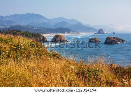 Pacific ocean coast - stock photo
