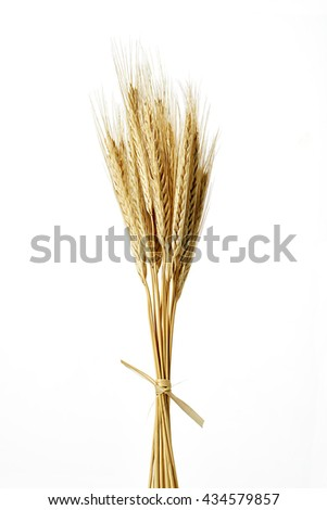Pack of wheat isolated on a white background on the vertical