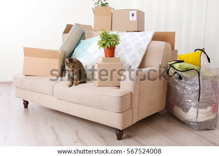 Home Furniture Movers Concept Interior Moving House Stock Images Royaltyfree Images & Vectors .