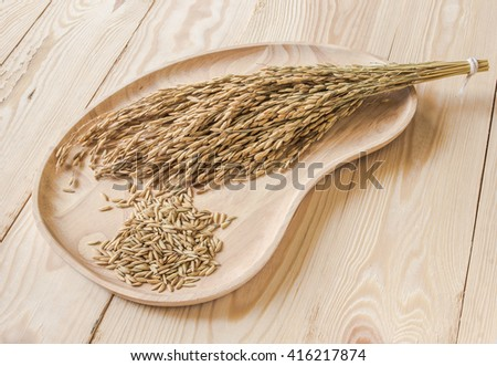 Paddy and rice spike on wooden plate. - stock photo